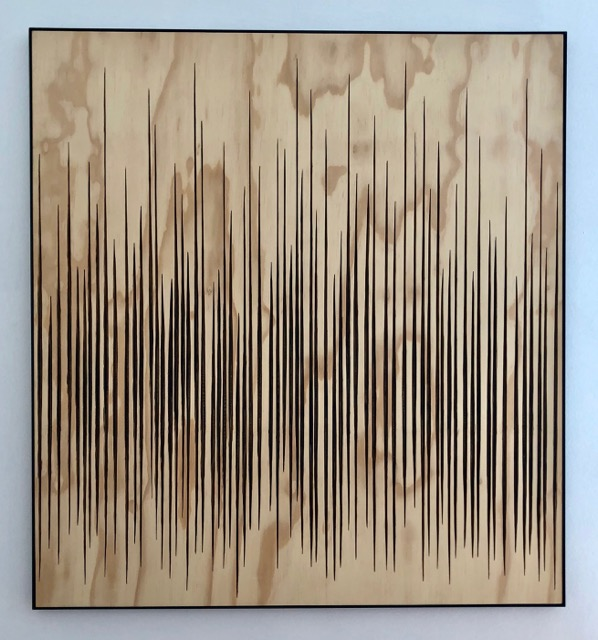 Burned Lines lV